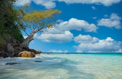 beach-4852830_640