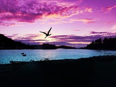 sunset-2730804_640